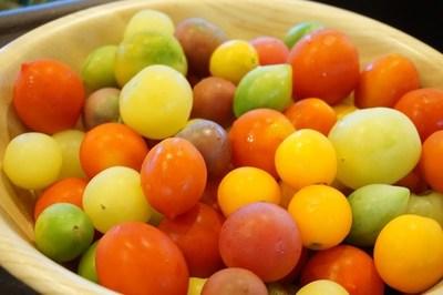 カラートマト
