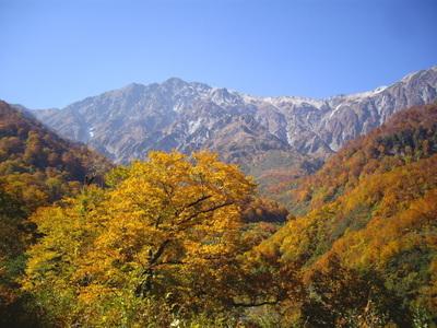 紅葉の白馬大雪渓への登山道