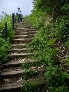 五竜高山植物園