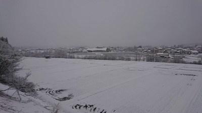 2019年3月の雪