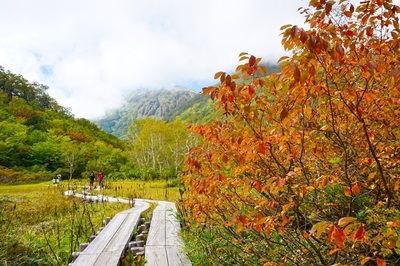 自然園の紅葉2