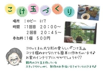 こけ玉教室_夏休みVer.jpg