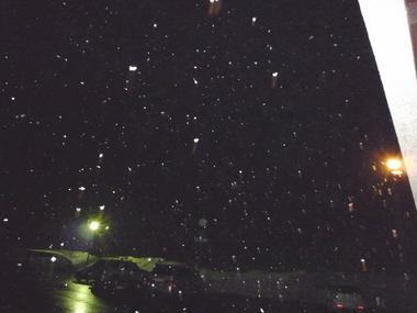 雪が降って来ました.jpg