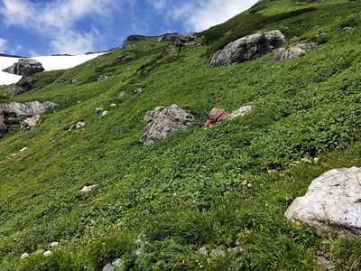 白馬岳登山