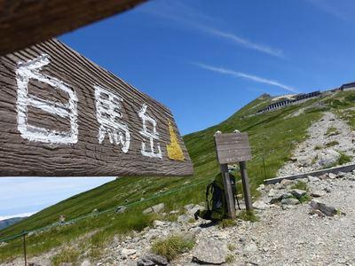 白馬岳稜線