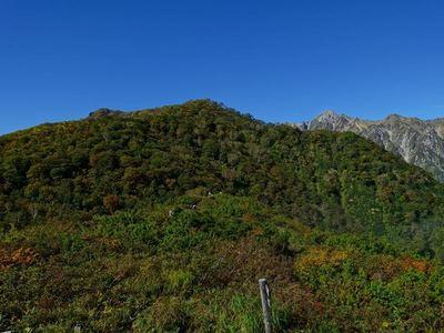 紅葉の小遠見山へ