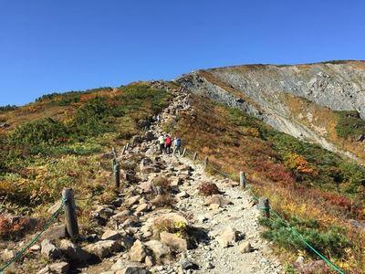 八方尾根の紅葉ハイキング