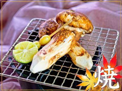 秋の松茸料理プラン